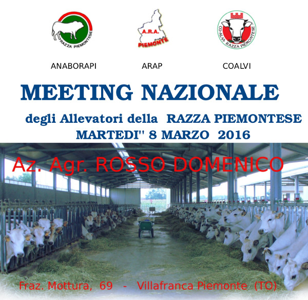 invito meeting